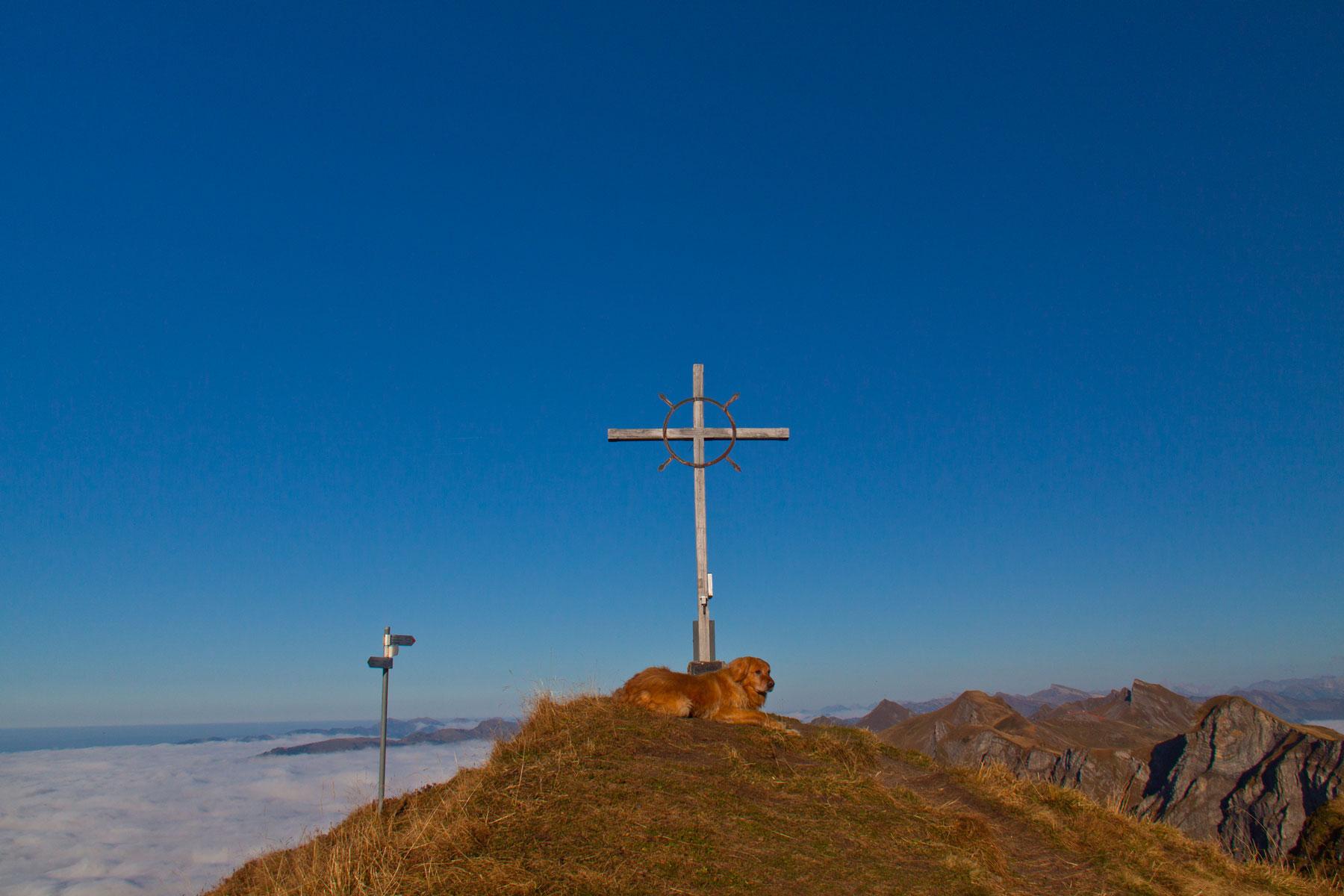 Gipfel Sünserspitze (2061 Hm)