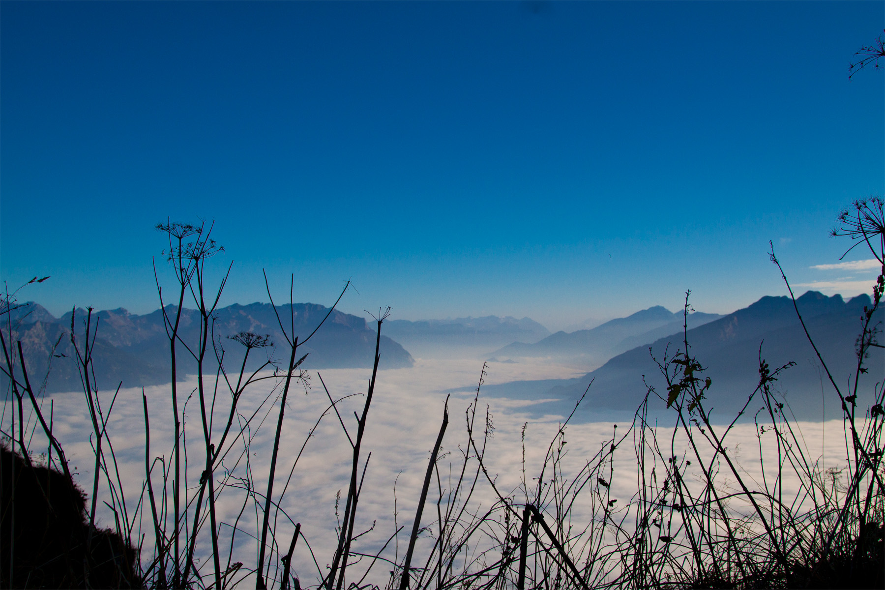 Blick auf das Nebelmeer Oberes Rheintal Richtung Chur