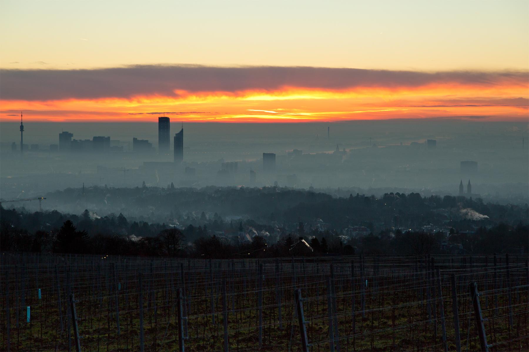 Cobenzl-Wien-Sonnenaufgang