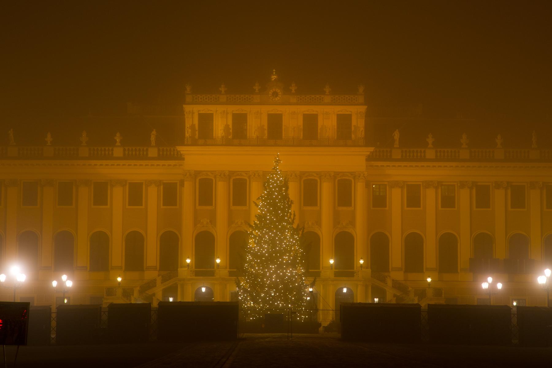 Christbaum beim Schloss Schönbrunn