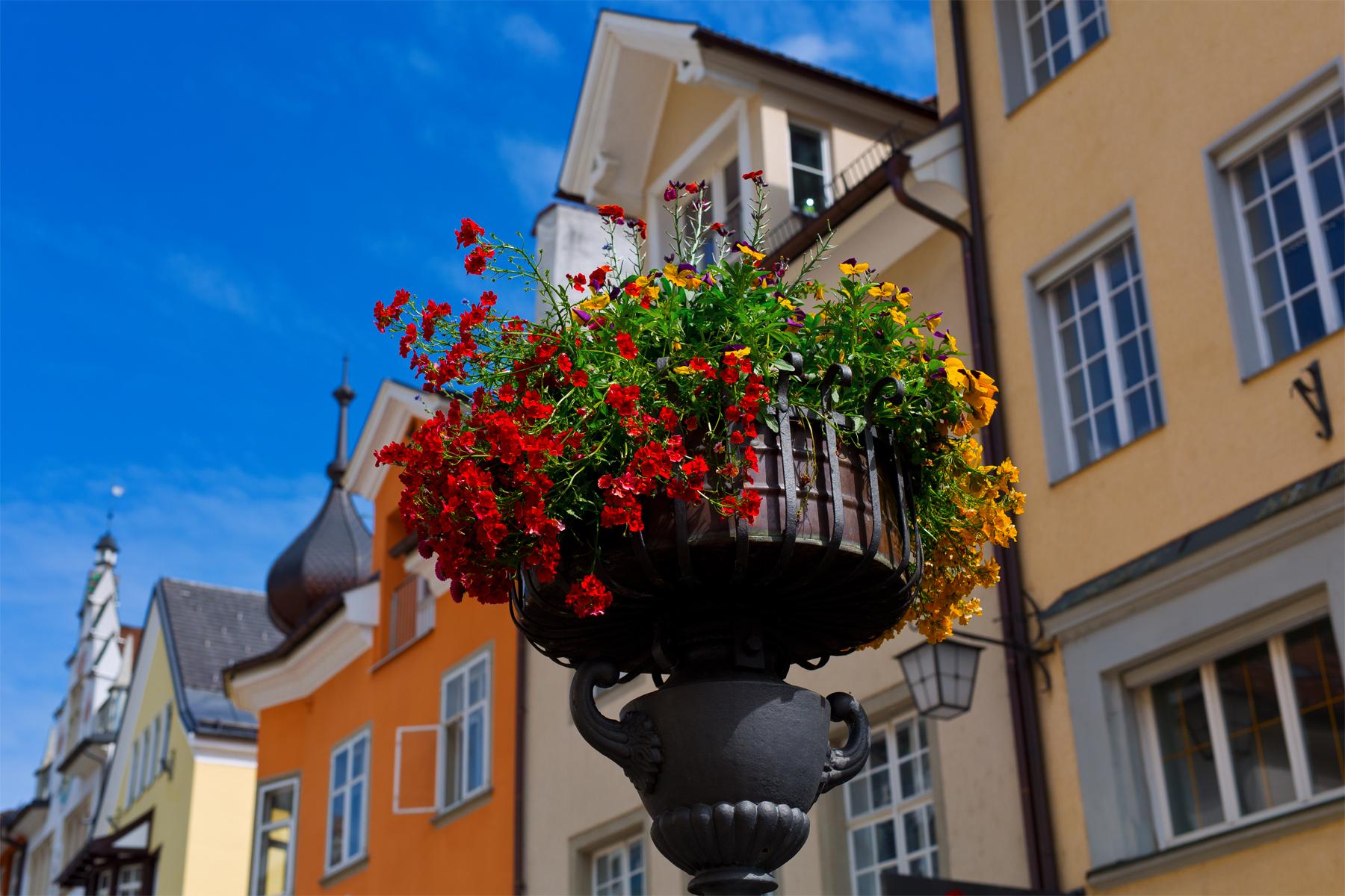 Brunnen mit Blumen, Feldkirch