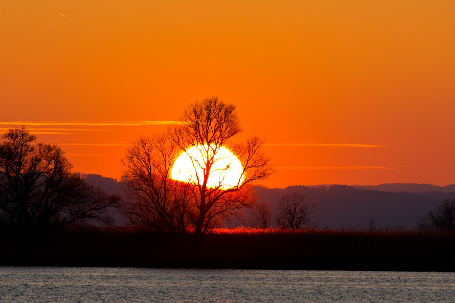 Sonnenuntergang Fussacher Bucht