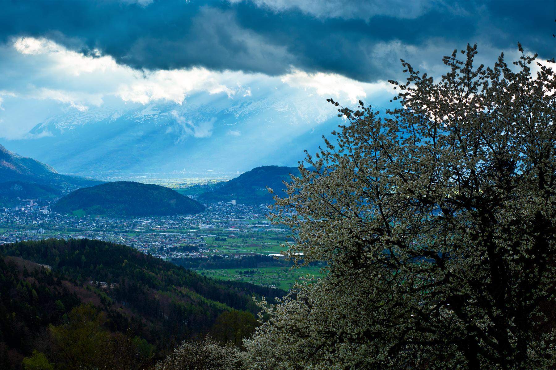 Ardetzenberg, Schellenberg, Hintergrund Buchser Berg