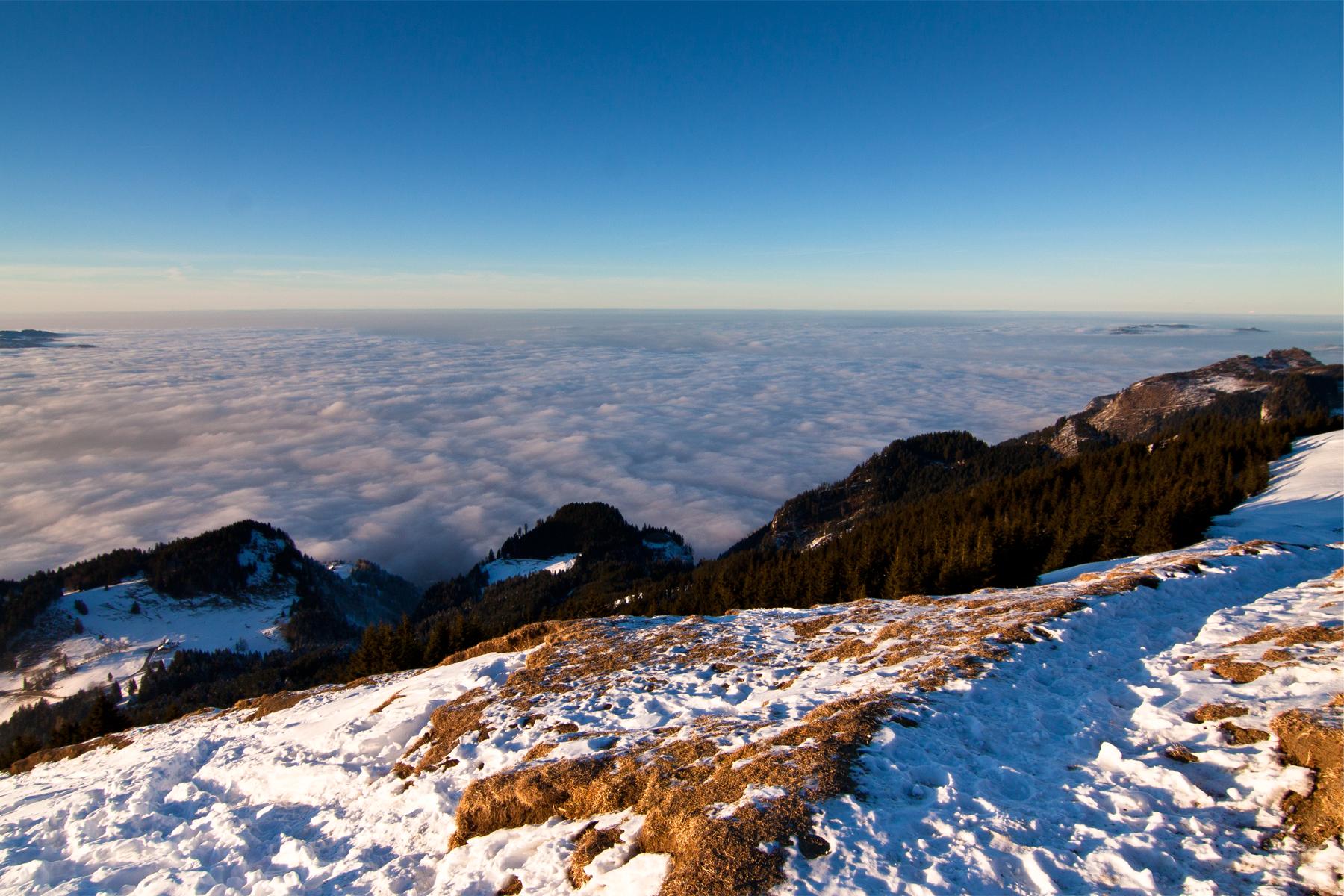 Nebelmeer statt Bodensee