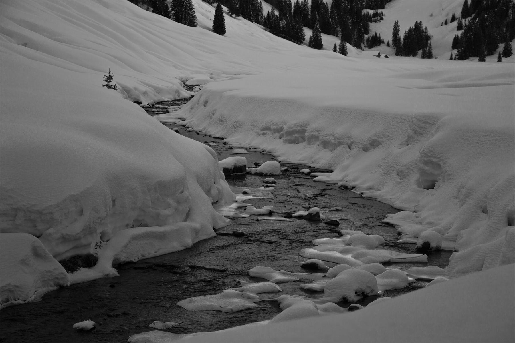 Garnitzbach nahe der Alpe