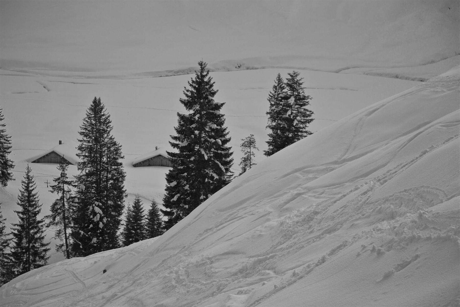 Oberhalb der Alpe