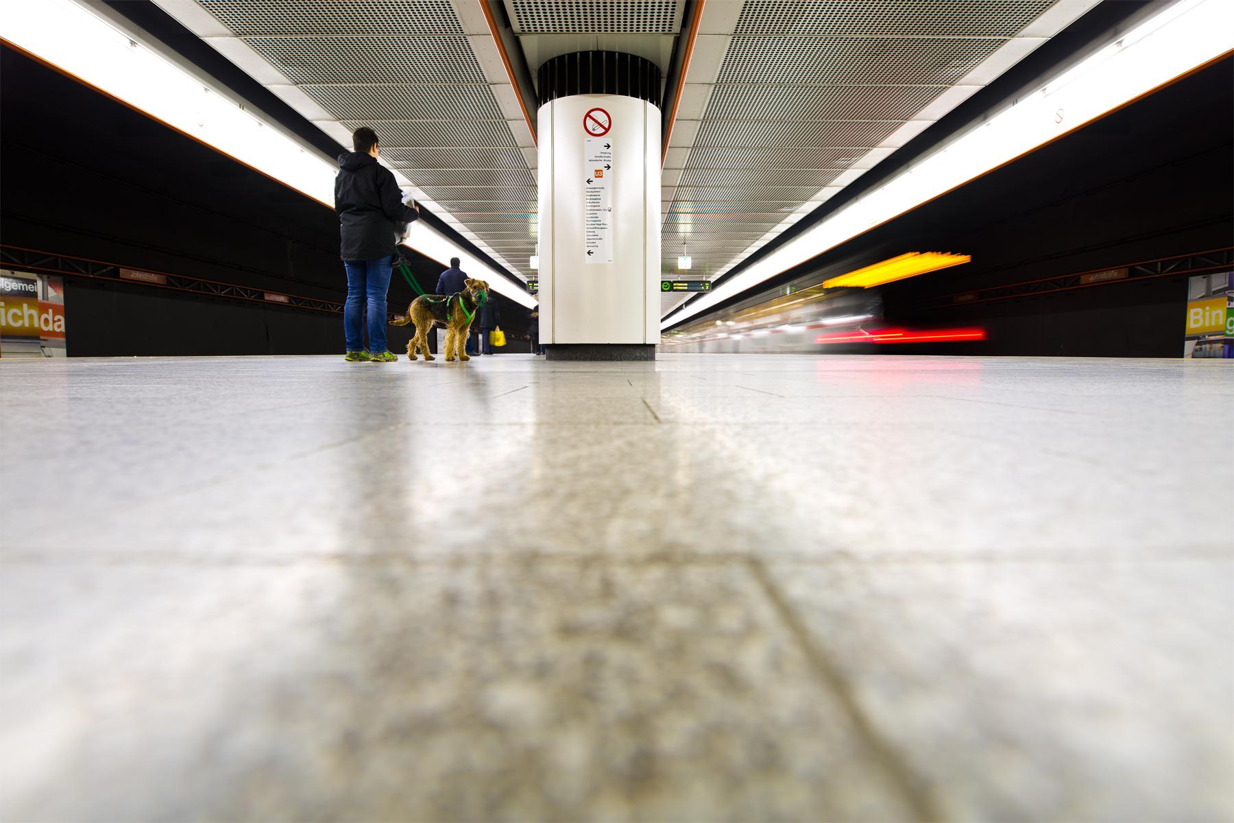 U-Bahnstation mit Hund