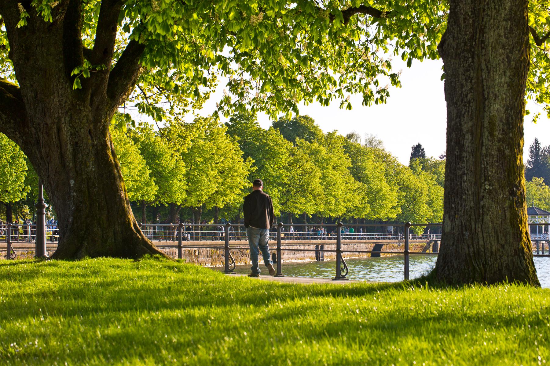 Spaziergänger-Bregenz-Seepromenade-Bodensee-Lake Constance