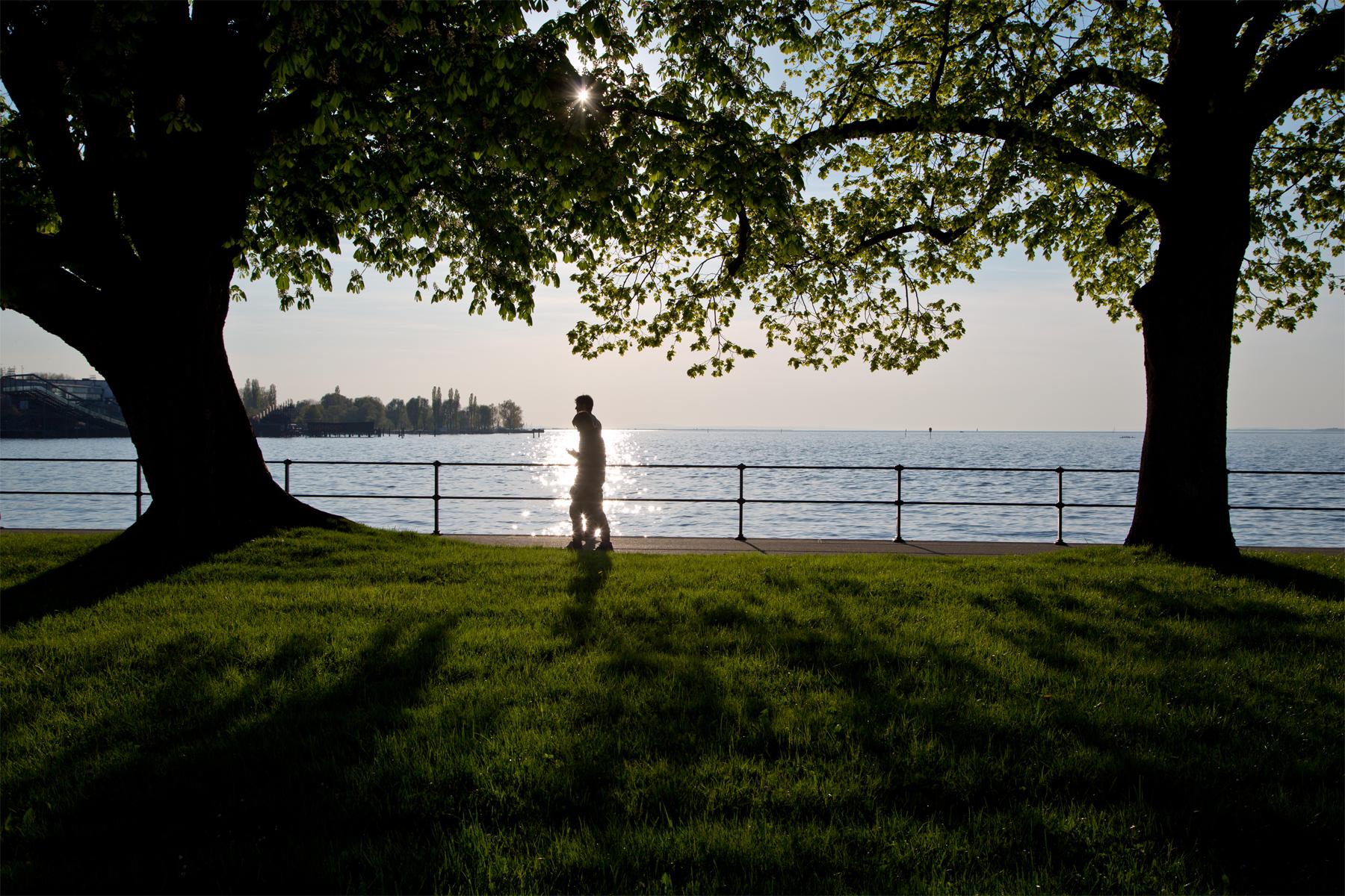 Bregenz-Bäume-Wasser-Bodensee-Spaziergänger-Lake Constance