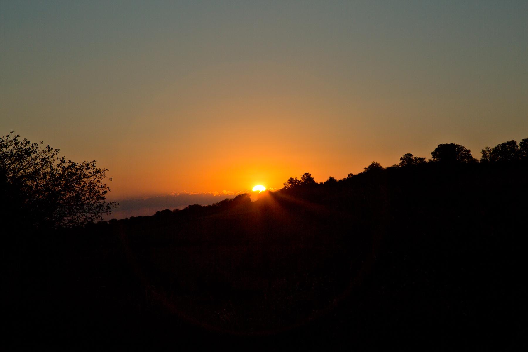 Morgenstund
