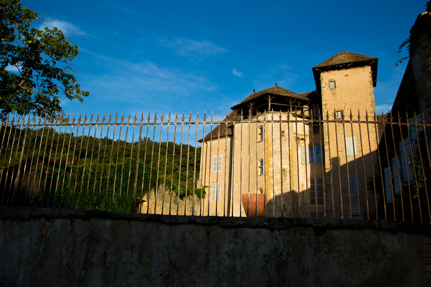 Chateau de Besanceuil