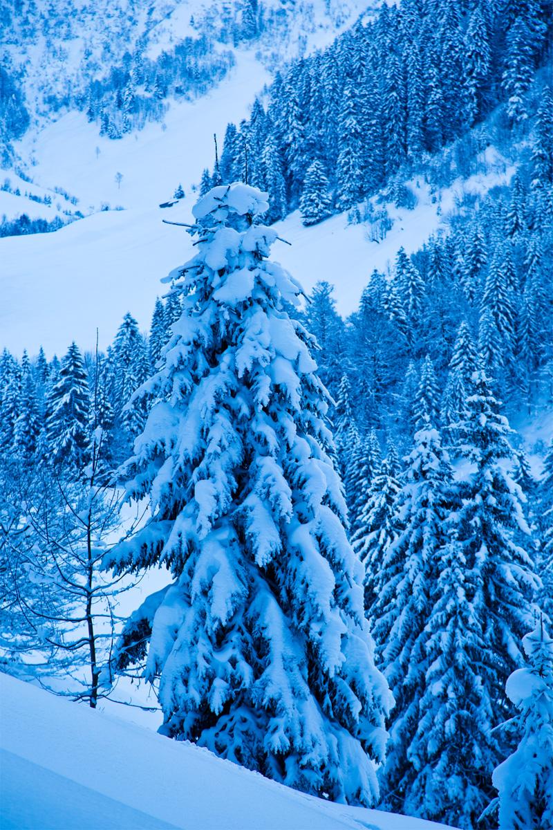 Schneebehangen