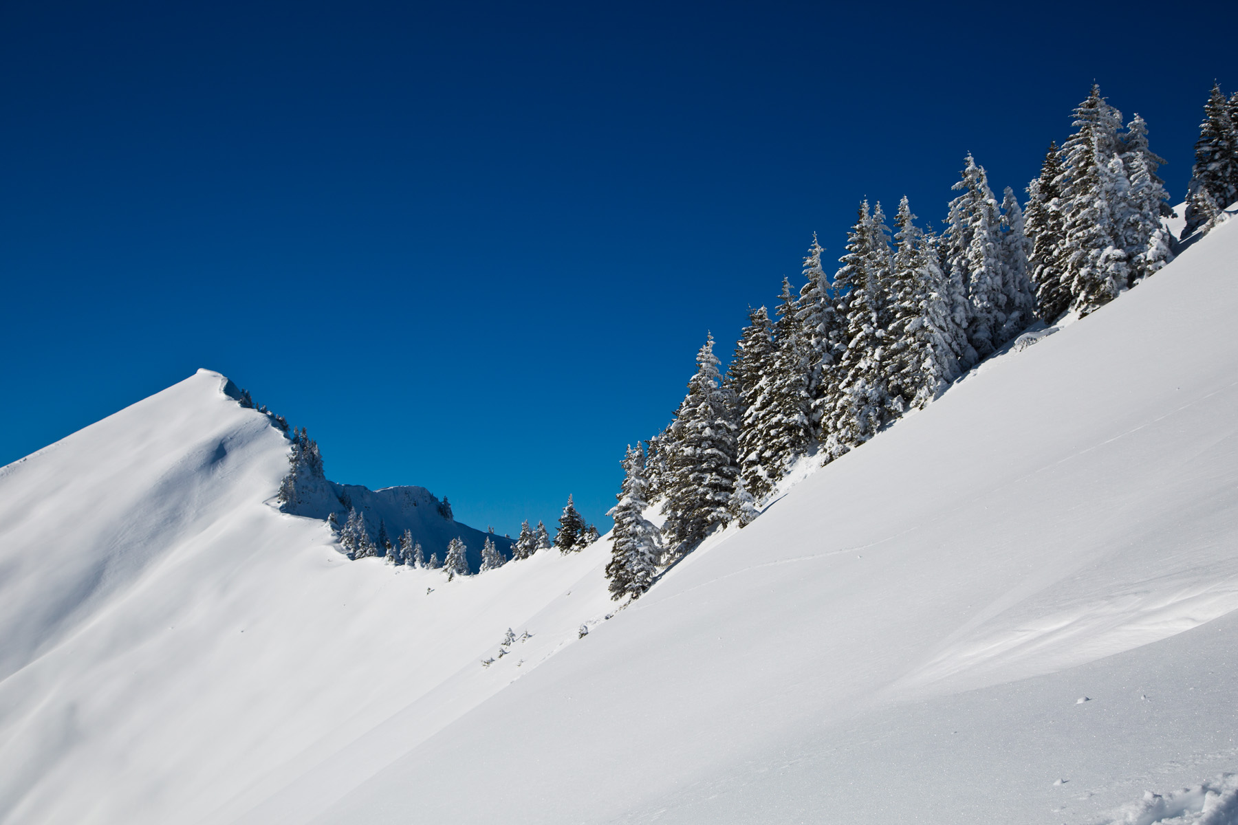 Bergkamm mit Kreuzspitze