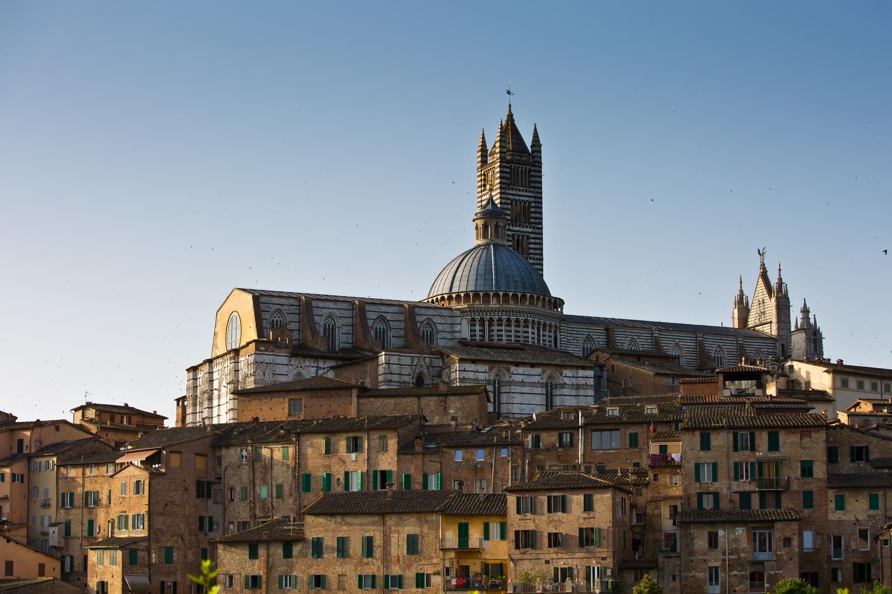 Cattedrale di Santa Maria Assunta)