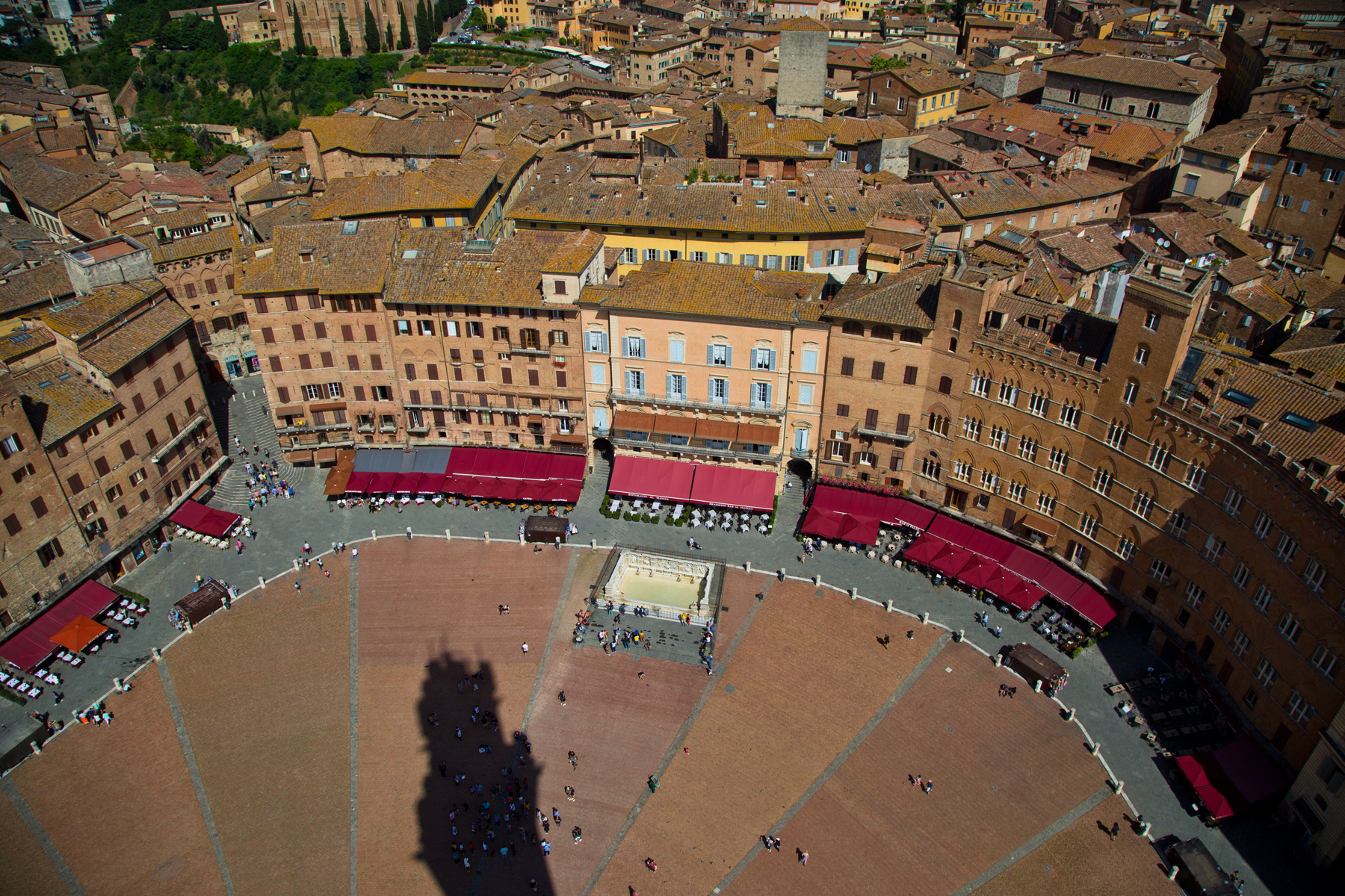 Piazza di Campo