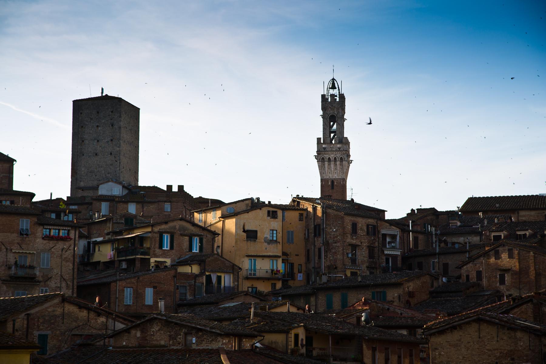 Silhouette von Siena