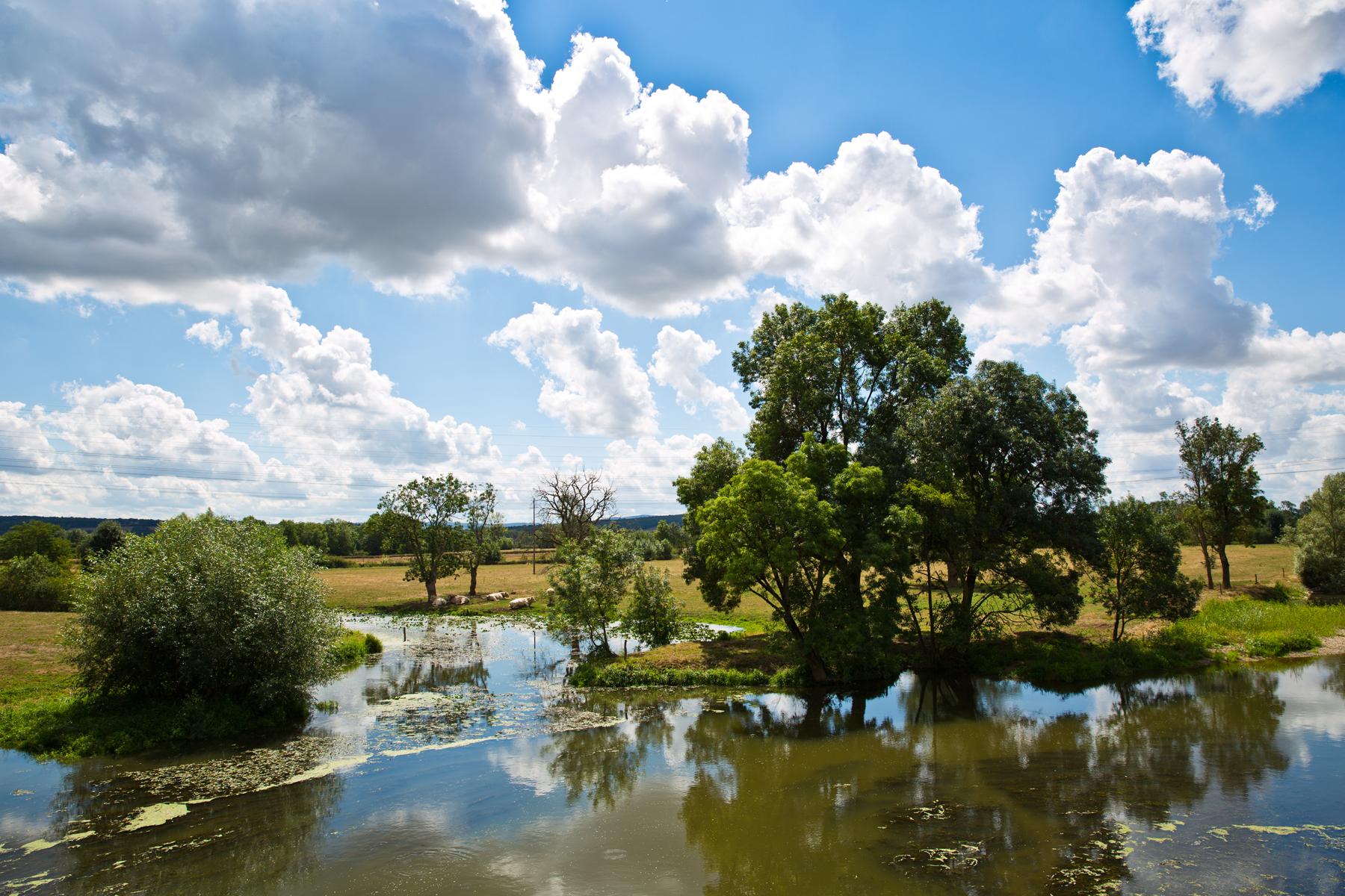 Flusslandschaft Grosne bei Sercy