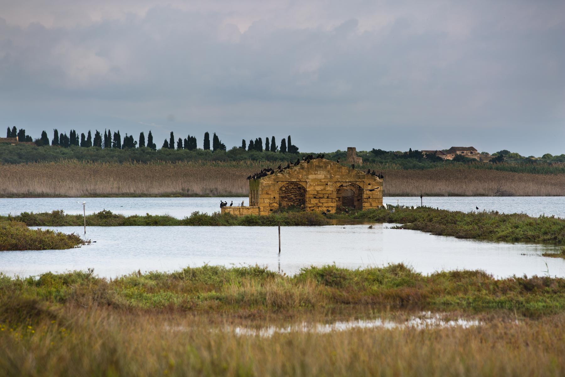 Lagune im Naturschutzgebiet